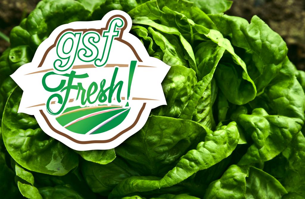 GSF-Fresh_Lettuce